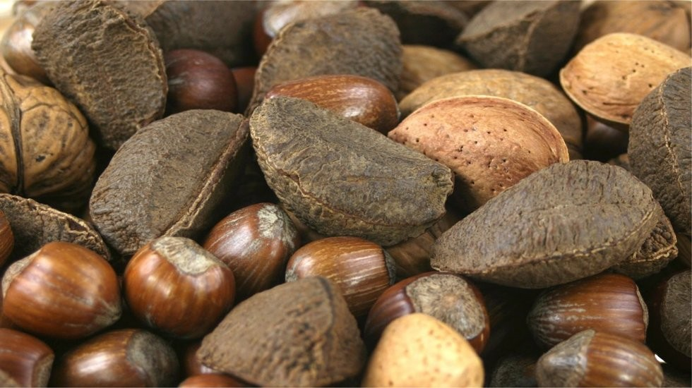 rsz_various_nuts